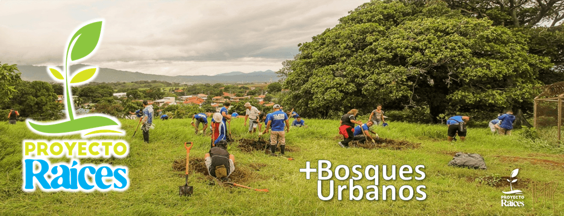 bosques + urbanos