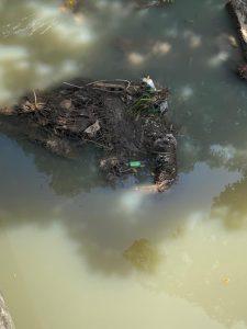 Aguas residuales en el cauce del río.