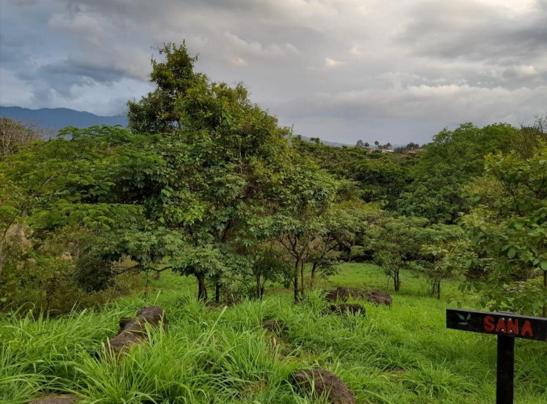 El proyecto del CCPJ colaborará en la intervención regenerativa de la Finca Municipal El Santuario. Foto cortesía de Alfredo Villegas.